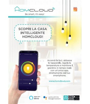 Poster formato A2 Homcloud